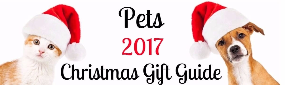 Pampered Pooches & Mollycoddled Moggies: Pet Gift Ideas for Christmas