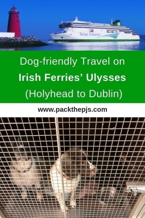 Dog Friendly Travel On Irish Ferries Ulysses Holyhead To